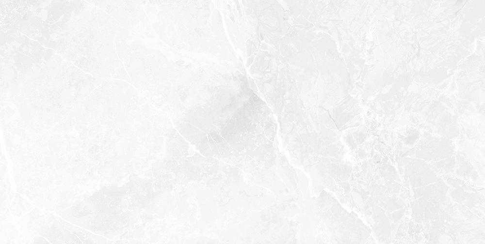 EARTHSTONE WHITE 60x120cm