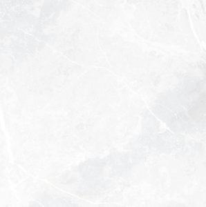 EARTHSTONE WHITE 60.8x60.8