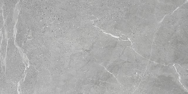 VERENAZZA GREY 60X120cm